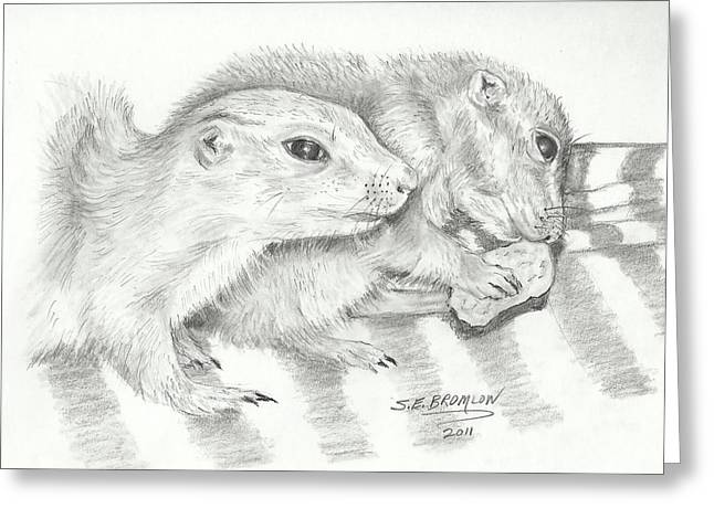 Prairie Dogs Greeting Card by Susan Bromlow