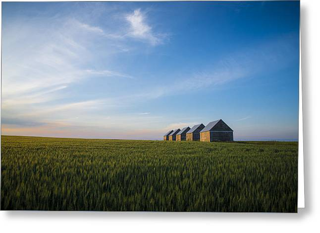 Prairie Evening Greeting Card