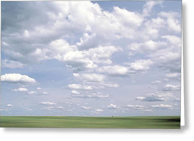Grassy Field Greeting Cards - Prairie Farmhouse Greeting Card by Alan Sirulnikoff