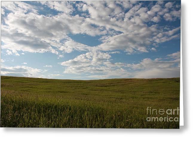 Prairie Field Greeting Card