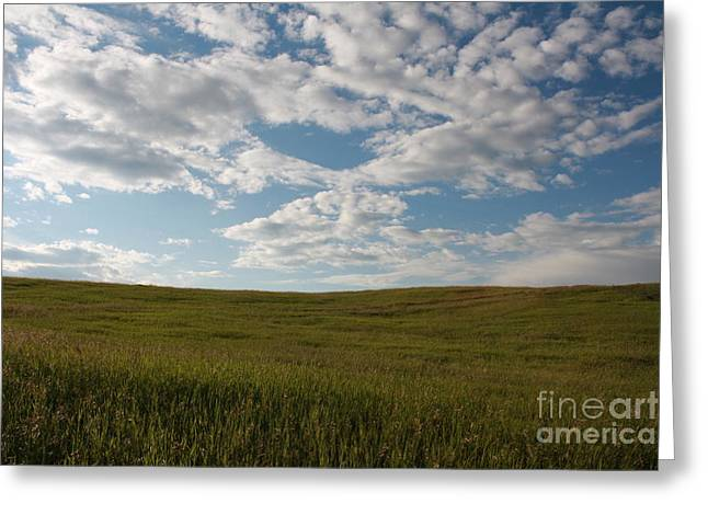 Prairie Field Greeting Card