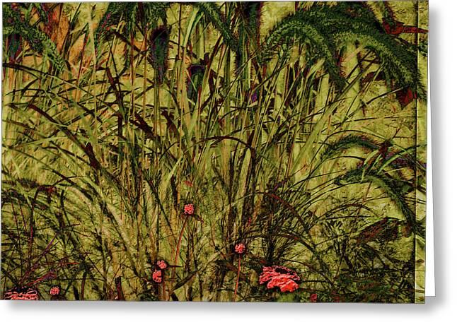 Prairie Grass Greeting Card by Barbara Berney