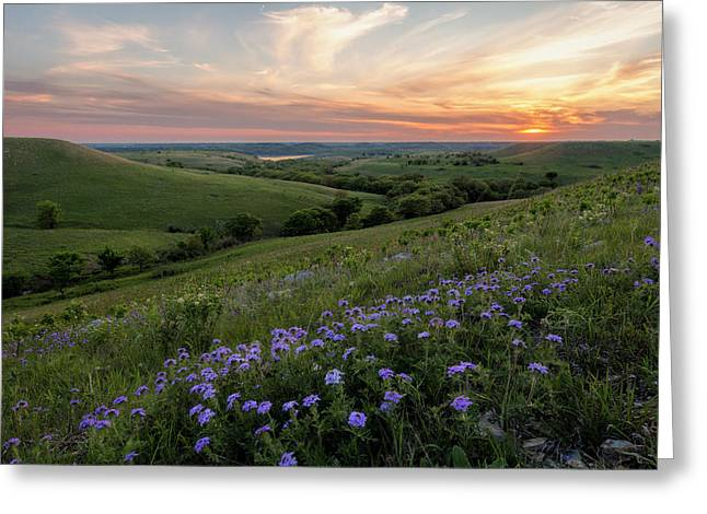 Prairie In Bloom Greeting Card