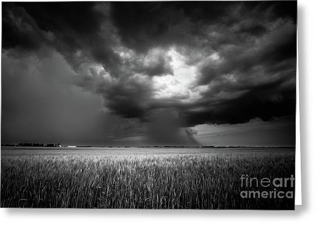 Prairie Storm I Greeting Card by Ian McGregor