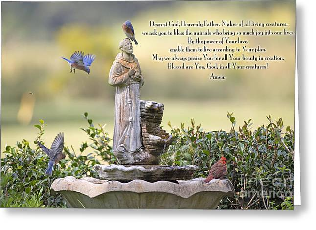 Prayer For The Animals That Bless Our Lives Greeting Card