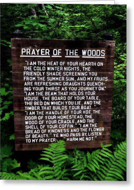 Prayer Of The Woods Greeting Card by Michelle Calkins