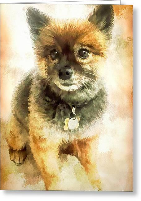 Precious Pomeranian Greeting Card by Tina LeCour