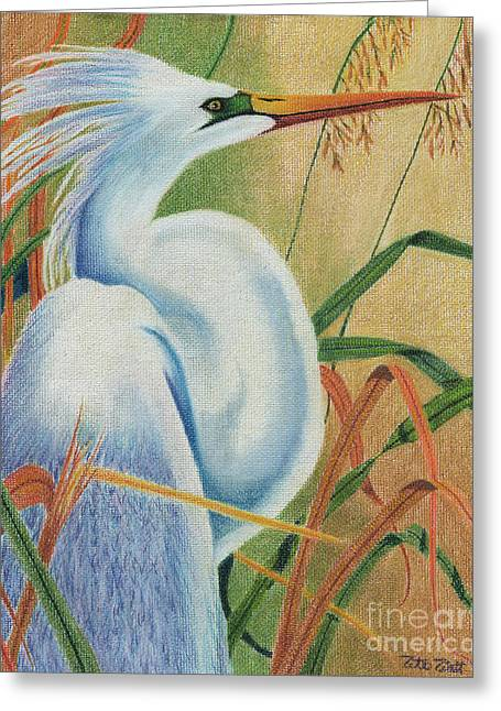 Preening Egret Greeting Card by Peter Piatt