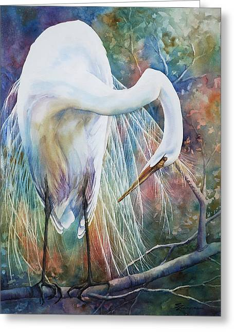 Preening Egret Greeting Card by Sue Zimmermann