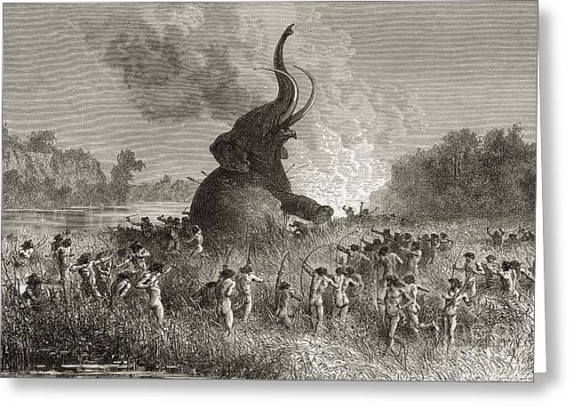 Prehistoric Man Hunting A Mammoth  Greeting Card by American School