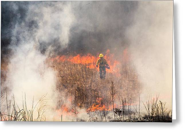 Prescribed Burn 2 - Uw Arboretum - Madison - Wisconsin Greeting Card