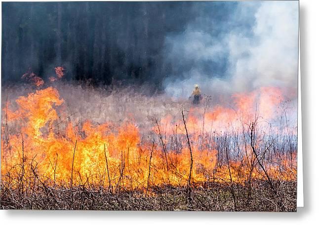 Prescribed Burn - Uw Arboretum - Madison - Wisconsin Greeting Card by Steven Ralser
