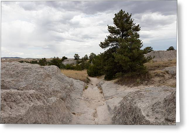 Greeting Card featuring the photograph Preserved Wagon Ruts Of The Oregon Trail On The North Platte River by Carol M Highsmith