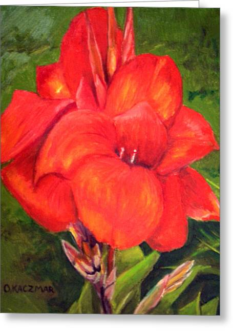 Presidential Canna Greeting Card by Olga Kaczmar