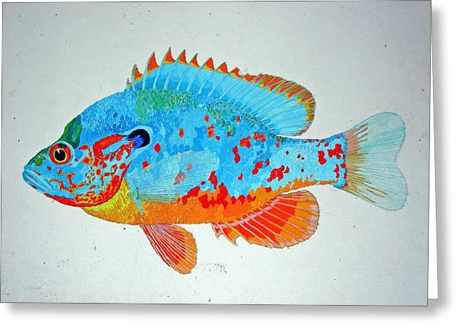 Pretty Blue Fish Greeting Card by Don Seago