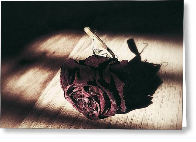 Pretty Dead Rose Resting In The Warm Sun Greeting Card