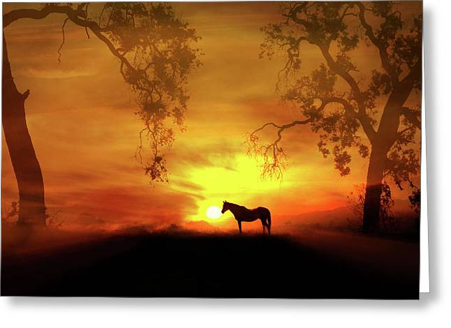 Pretty Horse In A Fiery Sunset Art Work  Greeting Card