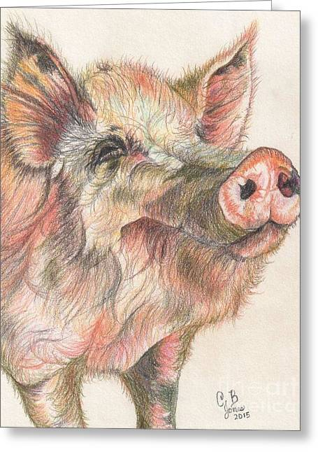 Pretty Imporkant Pig Greeting Card by Chris Bajon Jones