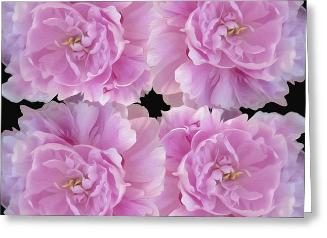 Greeting Card featuring the photograph Pretty In Pink by Linda Constant