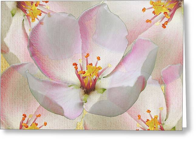 Pretty In Pink Greeting Card by Stacey Chiew
