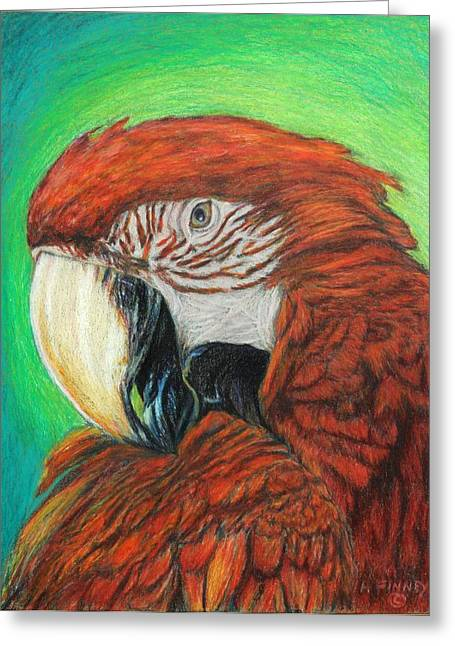 Pretty In Red Greeting Card by Angela Finney