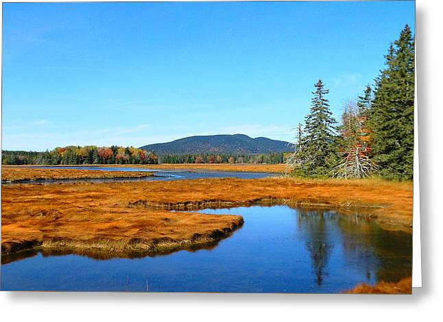 Pretty Marsh Greeting Card