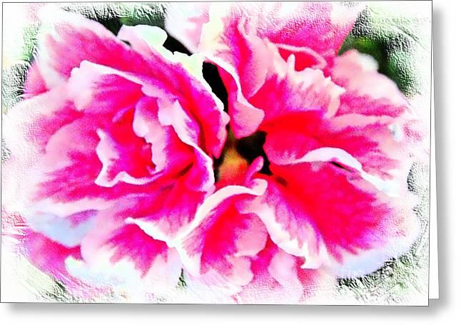 Pretty Pink  Azaleas Greeting Card