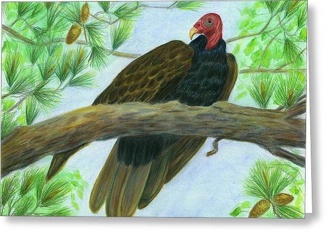 Pretty Redhead Turkey Vulture Greeting Card by Jeanne Kay Juhos