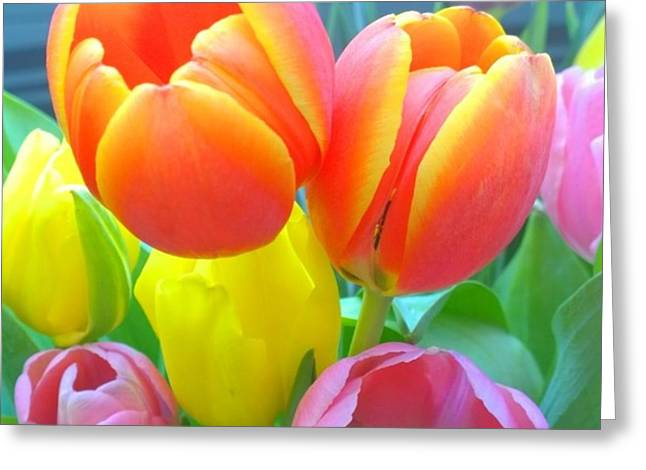 Pretty #spring #tulips Make Me Smile Greeting Card