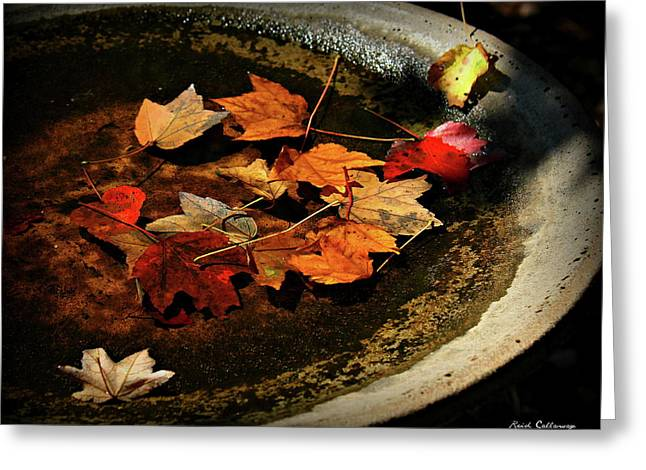Priceless Leaves Fall Greeting Card by Reid Callaway