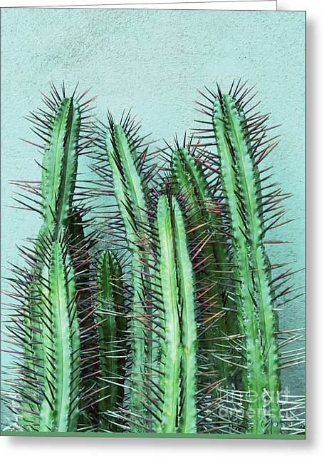 Prick Cactus Greeting Card
