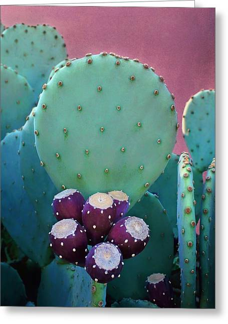 Prickly Pear - Cactus - Spineless Greeting Card by Nikolyn McDonald