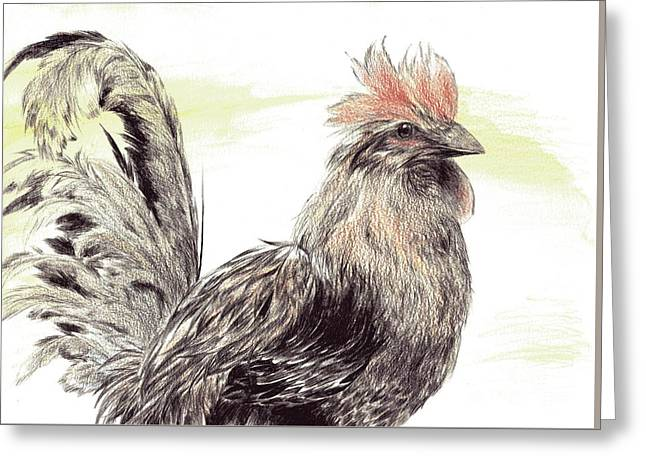 Pride Of A Rooster Greeting Card