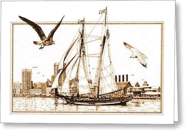 Pride Of Baltimore Greeting Card by John D Benson