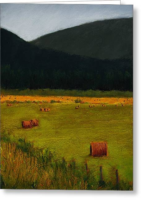 Priest Lake Hay Bales Greeting Card by David Patterson