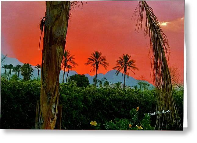 Primary Desert Sunset Greeting Card by Jack Eadon