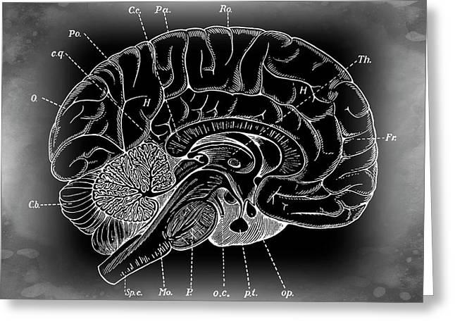 Primordial Mysterious Brain Greeting Card by Daniel Hagerman