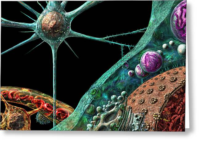 Microbiologist Greeting Cards - Prions Greeting Card by Russell Kightley