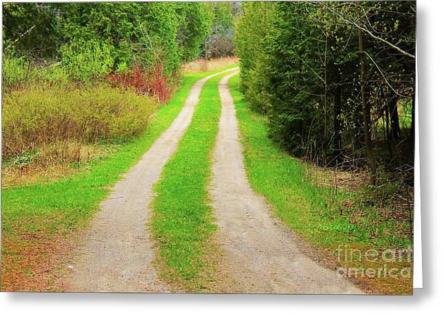 Private Farm Road Greeting Card by Anthony Djordjevic