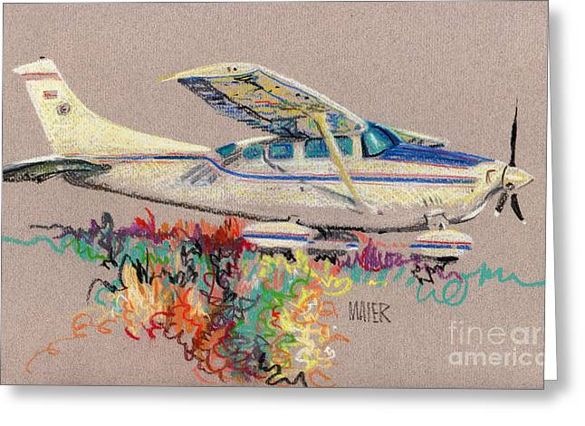 Private Plane Greeting Card