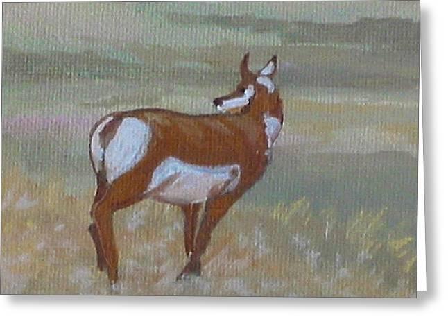 Prong Horned Antelope Greeting Card