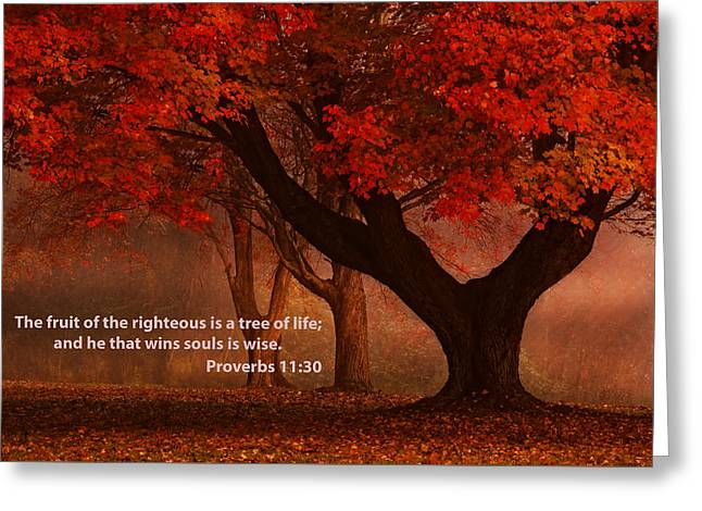 Greeting Card featuring the photograph Proverbs 11 30 Scripture And Picture by Ken Smith
