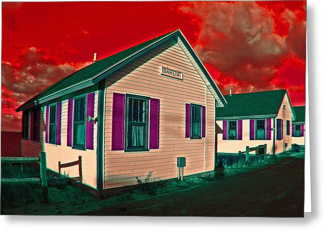 Provincetown Cottages Greeting Card