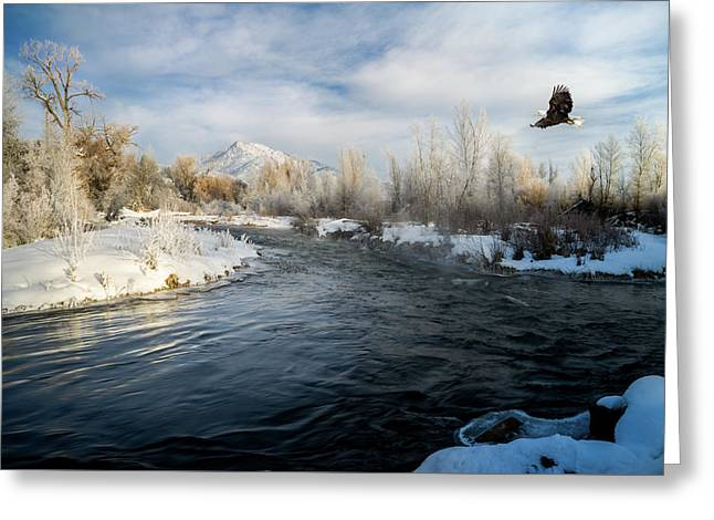 Provo River In Winter Greeting Card