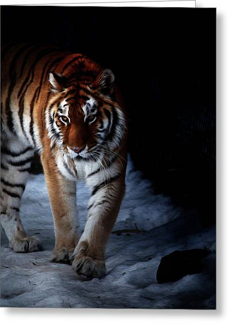 Prowling Out Of The Shadows Greeting Card