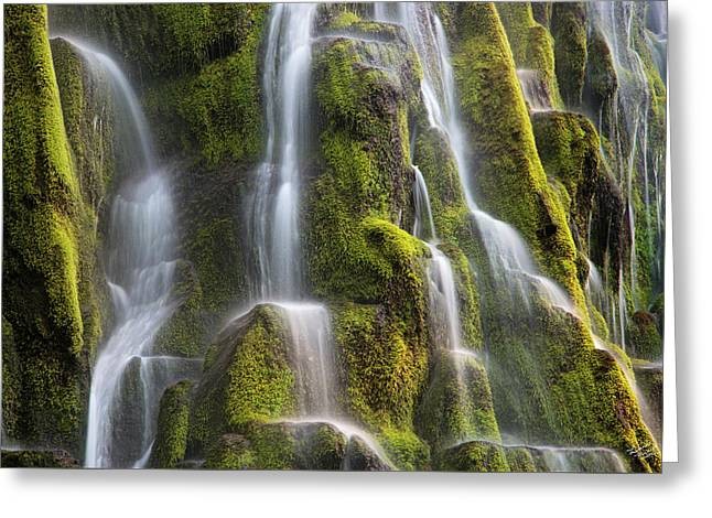 Proxy Falls Form And Light Greeting Card by Leland D Howard