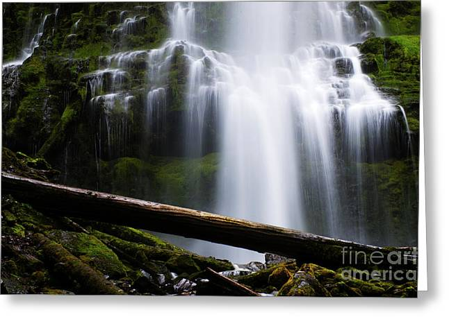 Proxy Falls Oregon 10 Greeting Card by Bob Christopher