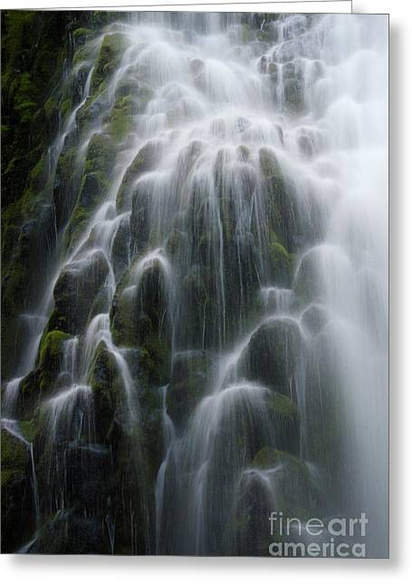 Proxy Falls Oregon 3 Greeting Card by Bob Christopher