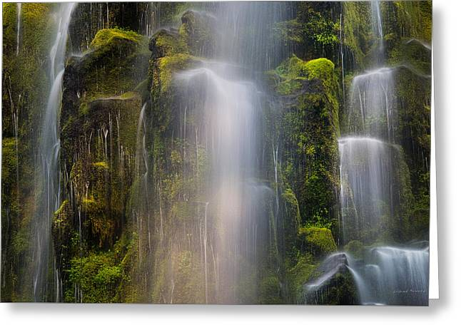 Proxy Falls Textures And Light 2 Greeting Card by Leland D Howard