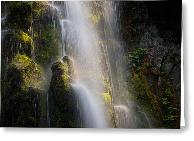 Proxy Falls Textures And Light Greeting Card by Leland D Howard